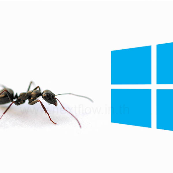 Ant-and-Windows